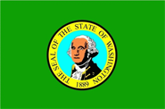 Washington Flagge 90x150 cm